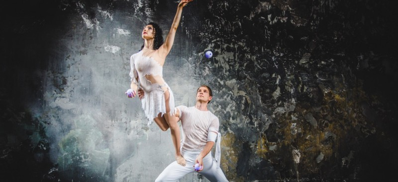 Artikelheader_Highlights_res2_2018.jpg